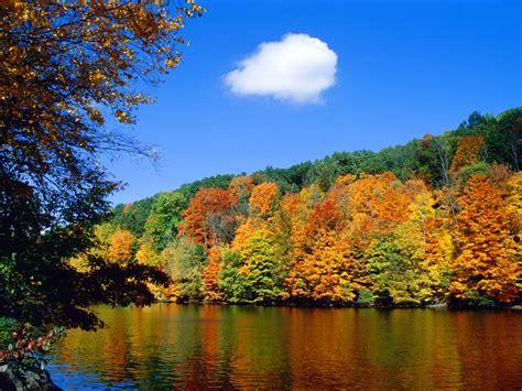 imagenes bellas de la naturaleza imagenes de naturaleza hermosa en widescreen 2 paisajes