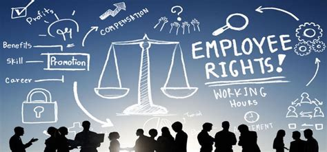 What Occupation Employs With A Mba by Employee Rights Employment Equality Mba News Australia