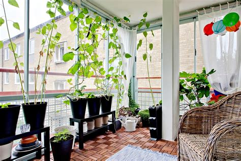 indoor garden designs decorating ideas design