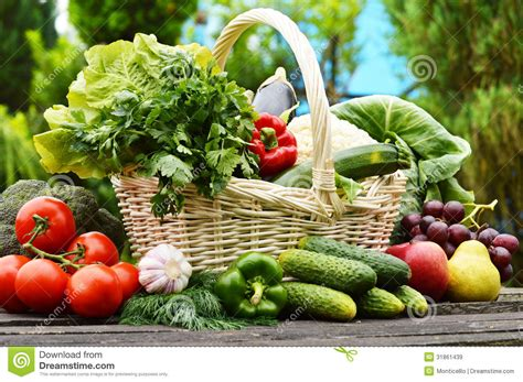 garden fresh vegetables fresh organic vegetables in wicker basket in the garden