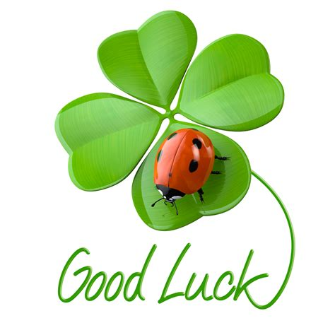gud luck luck and work in game development bobbyvoicu com