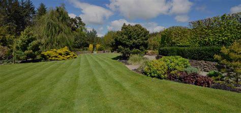 Lawn care services Lawn Maintenance Moreno Landscape