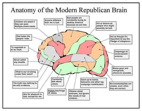 parts of the brain diagram for brain diagram politusic