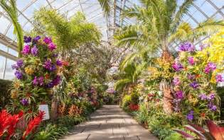 the new york botanical garden s 13th annual orchid show photos the 2017 orchid show brings a thai garden to the