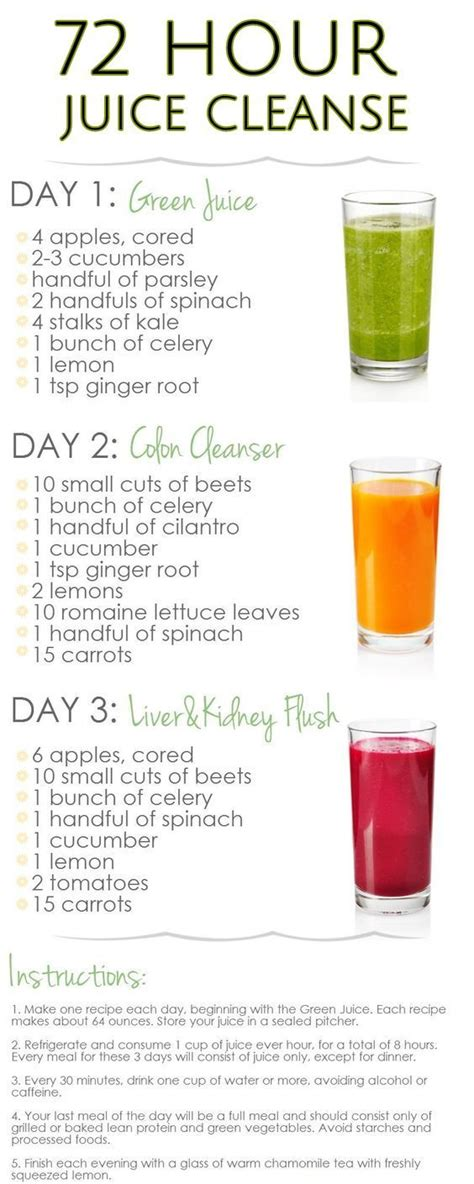 3 Day Cleanse Detox Diy by 10 Amazing Juice Diet Recipes For Weight Loss Cleanse