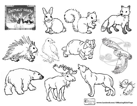 free coloring pages animals in winter free coloring pages of hibernate animals