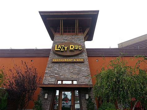 lazy restaurant bar lazy restaurant bar orange california likes to cook