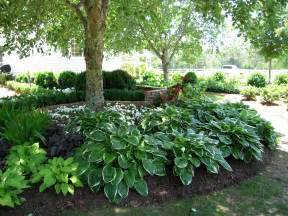 full shade garden ideas photograph shade gardens