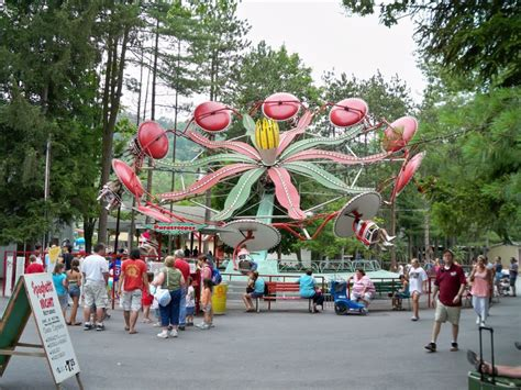 theme park synonym list of synonyms and antonyms of the word knoebels