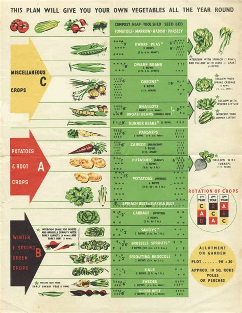 Vegetable Garden Crop Rotation Crop Rotation The Three Year Crop Rotation Plan