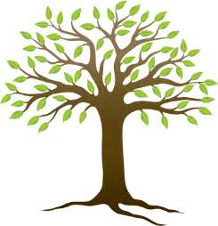 free images of trees free tree images clipart best