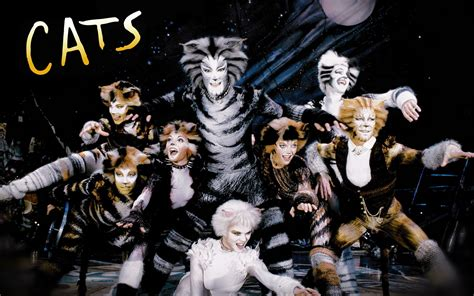 Cats On Cats Musical Musicals And Rum