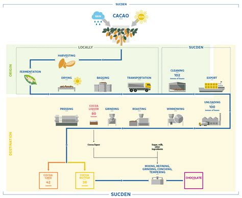 chocolate process flowchart process flowchart cocoa products services sucden