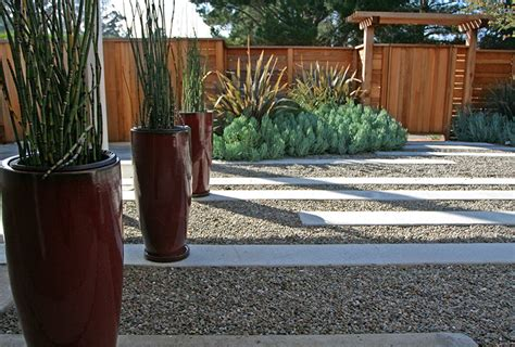 Landscape Fabric Horsetail Containers Of Horsetail Reeds Make A Big Impact Decoist