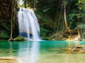 fond d 233 cran anim 233 d une cascade tropicale t 233 l 233 charger