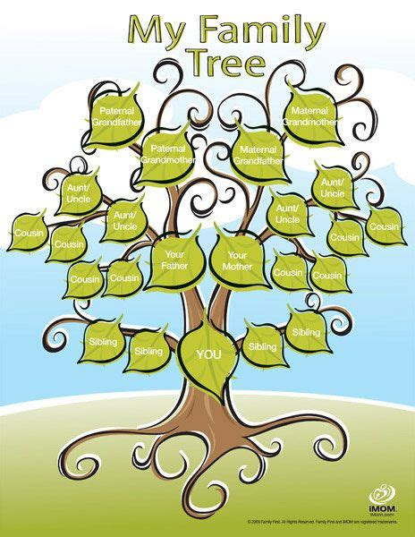 My Family Tree Include Family Tree Poster And 100 Stickers printable family tree printable family tree family trees and genealogy