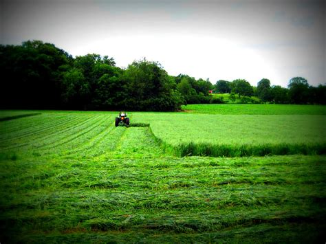 ranch land farms for sale indiana agricultural real estate wooded