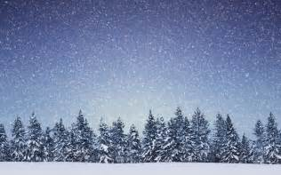 nature landscapes trees forest winter snow snowing flakes