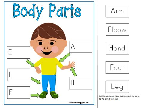 kindergarten activities my body all about me my body literacy math centers printables