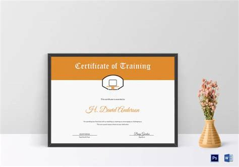 netball certificate template 23 certificate templates sles exles