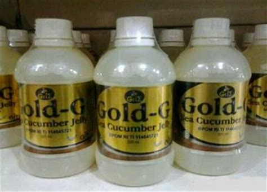 Madu Gamat Gold Jelly Gamat Gold G Nutrisi Tulang R seputar jelly gamat gold g
