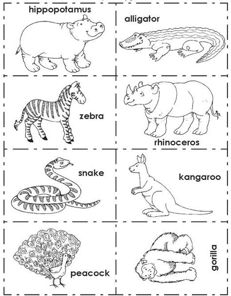 imagenes de zoologico en ingles animales del zool 243 gico para colorear imagui