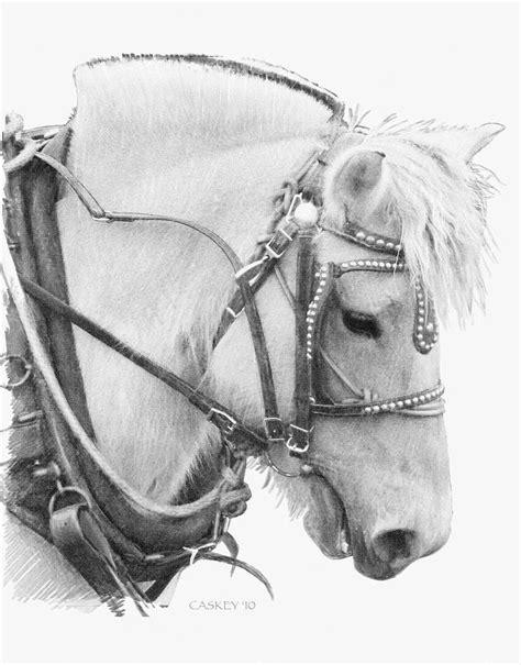 fjord drawing 541 best beloved fjords images on pinterest fjord horse