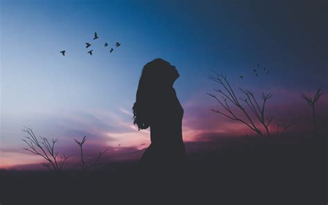 wallpaper  woman birds silhouette hd fantasy