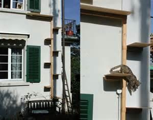 katzen treppe katzentreppe wer weiss was de