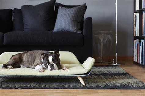 Cucce Per Cani Design by Cucce Per Cani Di Design Abbiniamole Al Nostro Stile