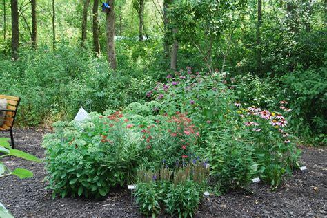 healing garden maitland garden of hope
