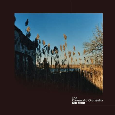 To Build A Home Cinematic Orchestra 301 moved permanently