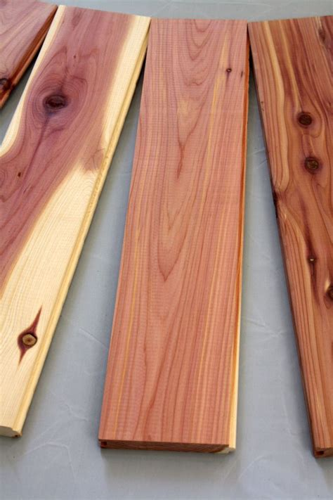 Tongue And Groove Cedar Closet by Best 25 Cedar Tongue And Groove Ideas On Diy Exterior Siding Tongue And Groove And