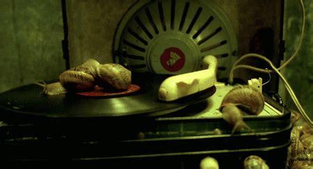 marc caro films jean pierre jeunet and marc caro tumblr