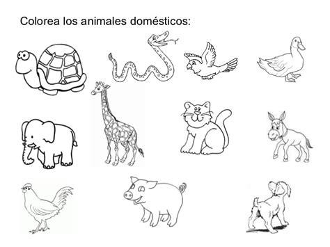 imagenes de animales salvajes y domesticos laminas de animales para infantes fotos de perritos tiernos