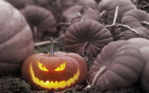 halloween themes for windows 7 free download halloween theme wallpaper for windows7 wallpapers hd