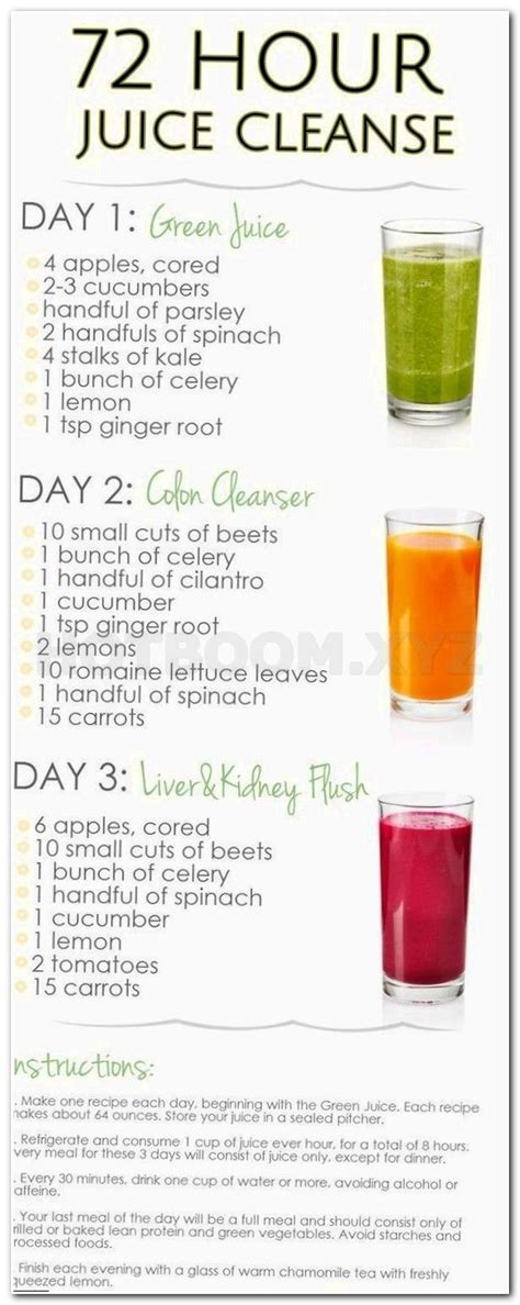 Juice Based Detox Diet Lose 20 Pounds by Best 25 Mayo Clinic Diet Ideas On Mayo Clinic