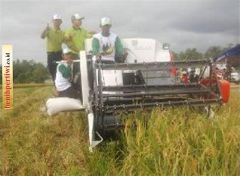 Benih Kacang Panjang Bola Dunia minat pertanian dan tantangan dunia global benih pertiwi