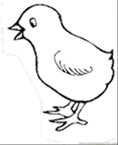 coloring pages colorchickth birds gt chick free