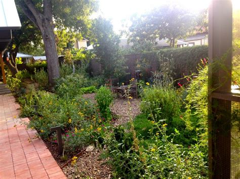how to plan a successful butterfly and pollinator garden