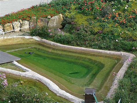 natura gart schwimmteich bauen mit der verbundmatte naturagart