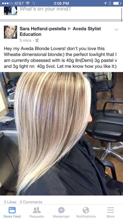 aveda hair color formulas best 25 aveda hair color ideas on hair