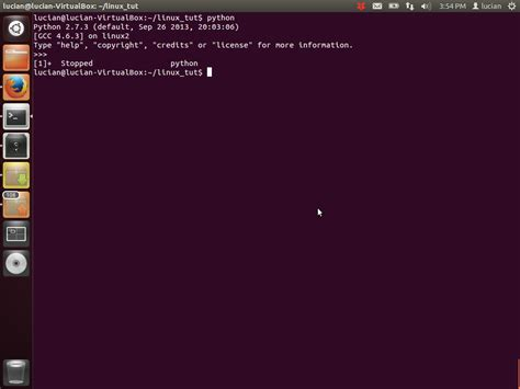 Ctrl Z Resume Process by Linux Command Line For Beginners