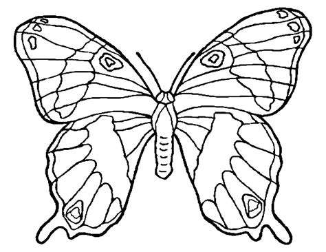 butterfly to color butterflies to color for children butterflies