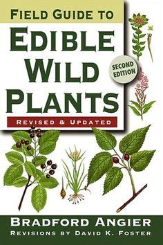 what a plant knows a field guide to the senses updated and expanded edition books a need to on genealogy home remedies and