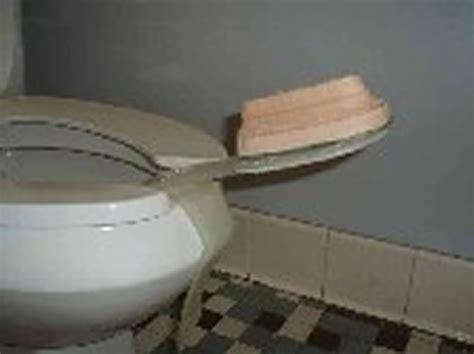 bathroom assistive devices rehabilitation engineering autonomous toileting assistive