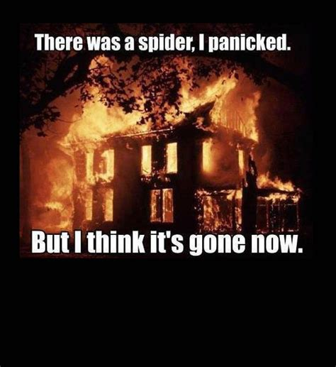 Spider In House Meme - meme burn house down