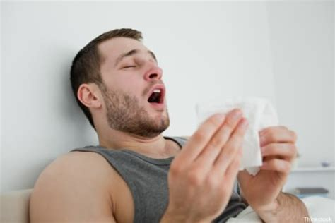 constantly sneezing best tips to cure constant sneezing best health and tips