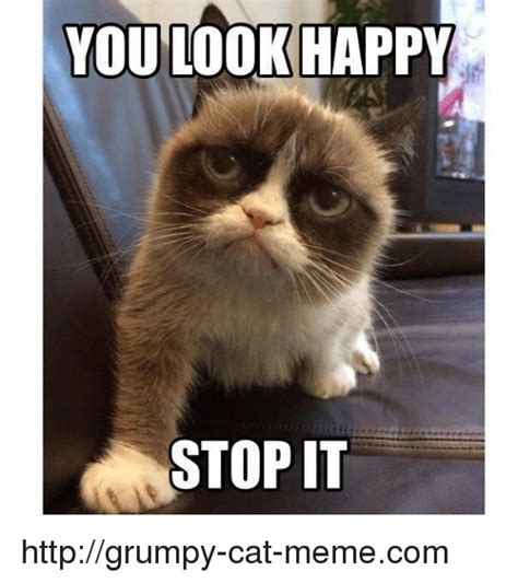 how to look happy you look happy stop it httpgrumpy cat memecom meme on sizzle