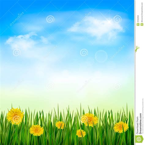 Customizable Floor Plans nature background with green grass and flowers and stock